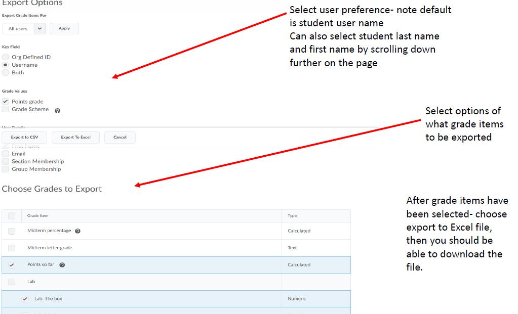 Screenshot of Export Options